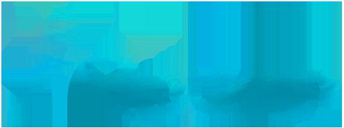 Adara-Large-Logo
